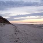 baywood-beach-VA2